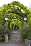 opening-garden