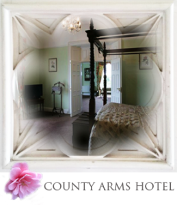 staycountyarms