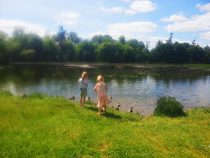 birr-castle-duck-feeding