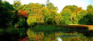 Autumn at Birr Castle