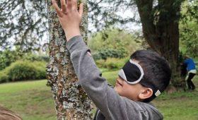 Dillon blindfold